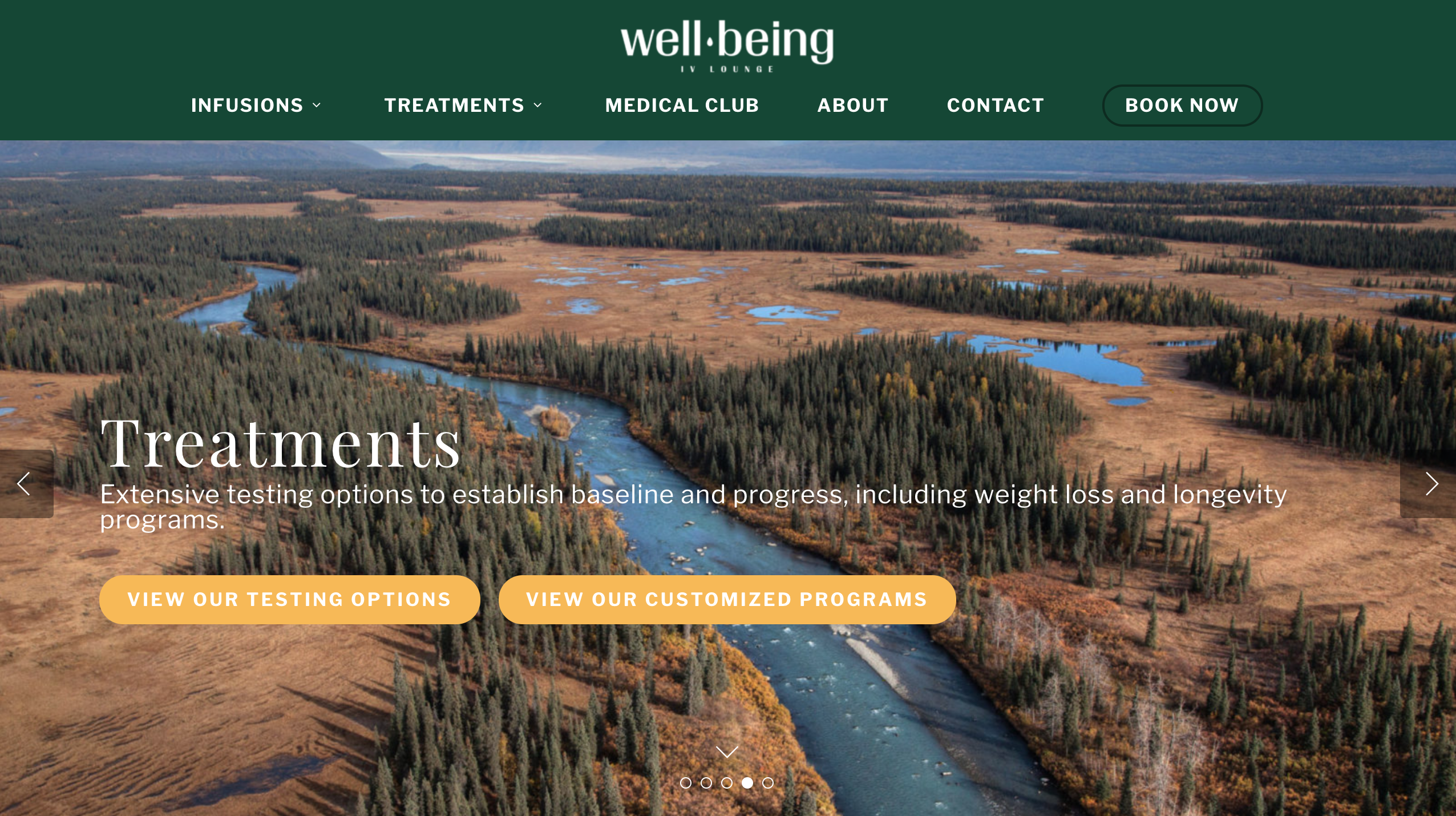 Well Being IV Lounge website screenshot